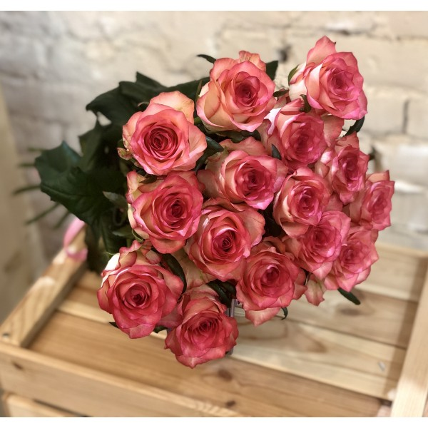 Bouquet of 15 pink roses