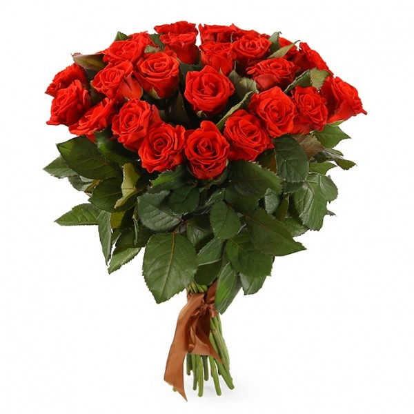 Bouquet of 25 red roses Eltoro