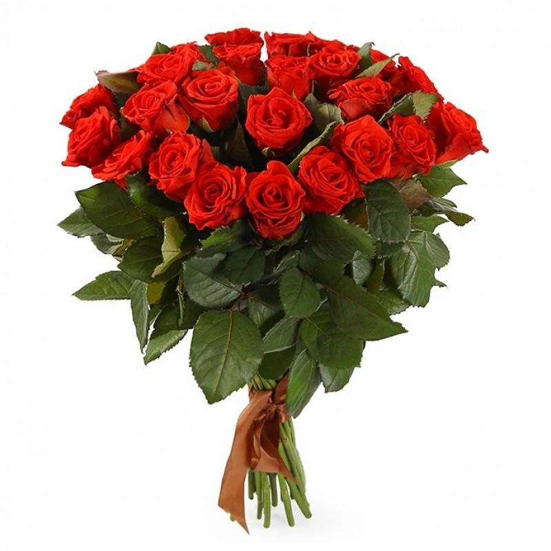 Bouquet of 25 red roses Eltoro