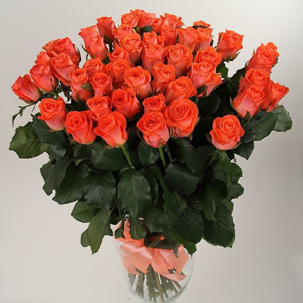 Bouquet 51 orange rose